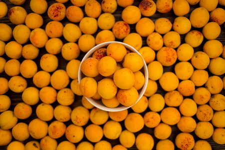 apricot kernels: Fresh apricots in a plate on a wooden background, fruit composition