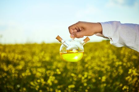 rapeseed oil bottle in hand of an agronomist or biologist on background rape field Banque d'images