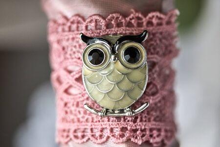 Owl bird sitting on the branch brooch enamel rhinestone Standard-Bild