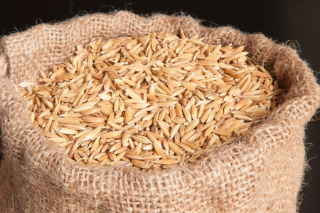 seed rice in bag photo