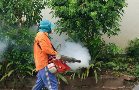 dengue: Comune Warinchamrarb, Ubon Ratchathani, Thailandia, July 24,2013 Appannamento dalla sanit� pubblica per Aedes controllo dengue, per un'epidemia di febbre dengue. Editoriali