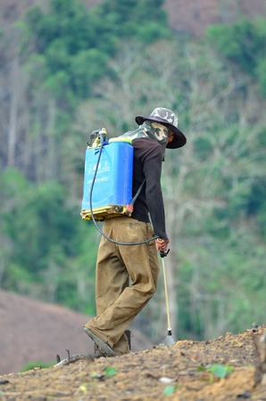 shifting: BAN  NAMLOW, VIANGPHOUKHA, LUANGNAMTHA , LAO P D R � MAY 31  Unidentified  akha  ethnic man  is spraying chemicals  in the shifting cultivation on May 31,2013 ,Viangphoukha,Luangnamtha,Lao pdr Editorial