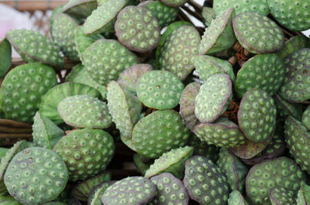 Lotus seeds photo