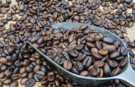 Coffee beans in a scoop  photo