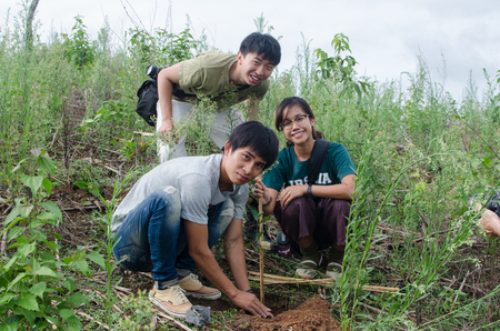 nus: BAAN MAE SA, MAE CHAEM,CHIANGMAI,THAILAND - JUNE 5  Unidentified NUS and CMU students are participating in reforestation at public place on june 5,2014,Baan Mae Sa,Maechaem,Chiangmai,Thailand