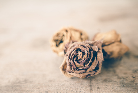 wilted: Wilted roses on wooden table