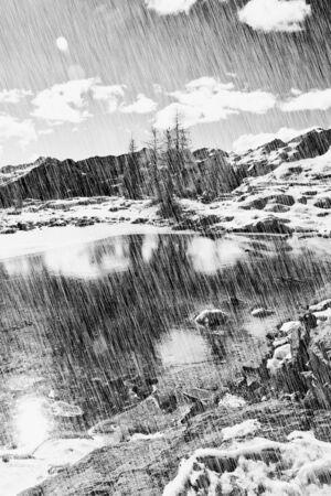 b w: autumn landscape in black and white. Stock Photo