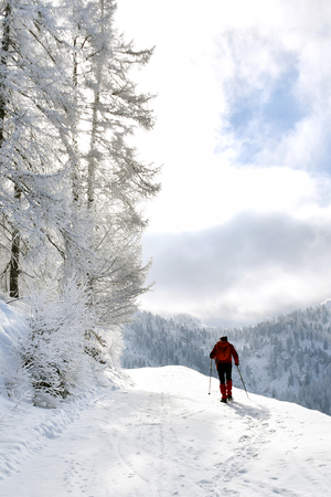 The athlete goes up the mountain with snowshoes