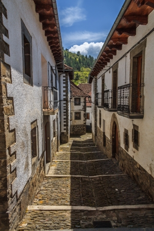 pyrenean: Old Pueblo Navarro Pirenei