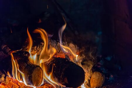 bright fire in the fireplace, in the foreground burned firewood