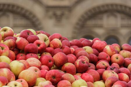 A lot of autumn red beautiful apples. A bountiful harvest. Copyspace Stock fotó