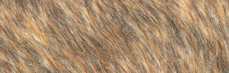 Close-up of a fluffy dark brown faux fur fabric with a background texture. Brown artificial fabric, can be used as a background. Fur for toys or clothing. Eco-friendly replacement of natural fur. Stockfoto