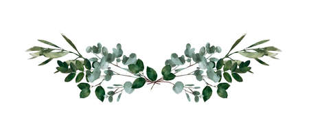Watercolor modern decorative element.  Eucalyptus round Green leaf Wreath, greenery branches, garland, border, frame, elegant watercolor isolated,