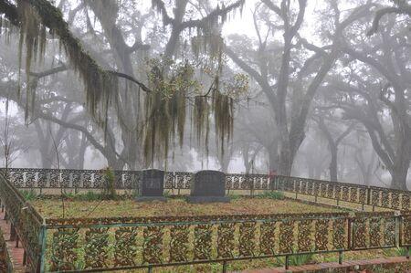 Vintage Southern Cemetery 2 Редакционное