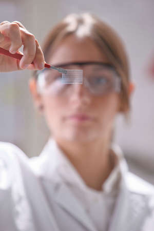 Transparent of graphene application  photo