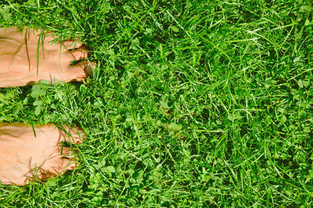bare feet boys: Close up of feets on the grass