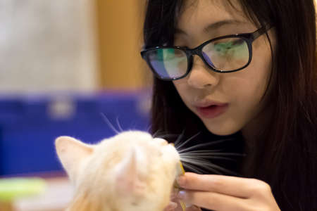 amigos abrazandose: Asian girl with glasses playing with cat