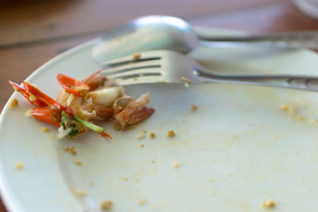 leftover: Leftover Thai food on the plate Stock Photo