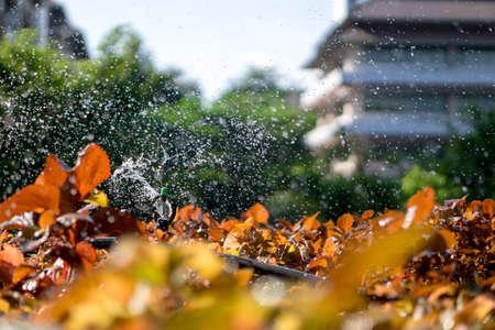 gicleurs d'eau à l'Université Thai