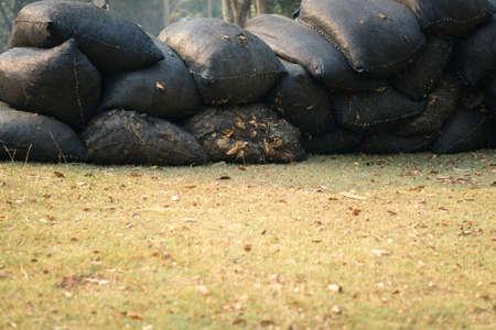 bagged: Full of tree leaves garbage bag