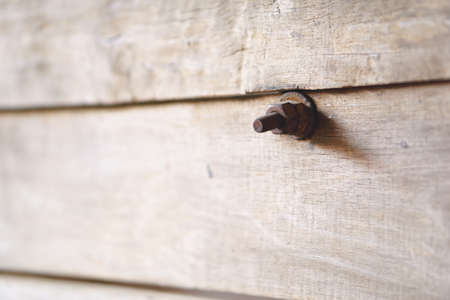 rusty nail: Old weathered log wall texture with rusty screw