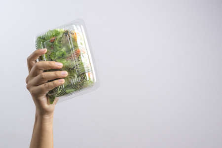 Hand holding box of  vegetable Hydroponics Veget Salad Roll with crab stick on white background Imagens