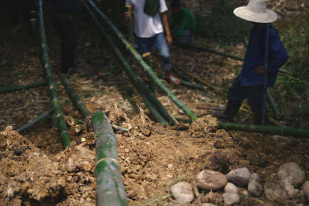 Asian worker using bamboo wood for building natural check dam
