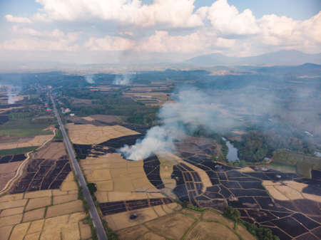 Burned rice straw in agriculture field