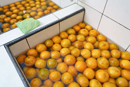 Washing oranges before eating with sponge for cleaning wax and stain