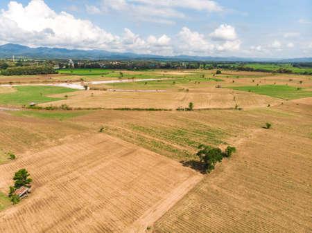 Empty crop field near rural village in Asian country Standard-Bild