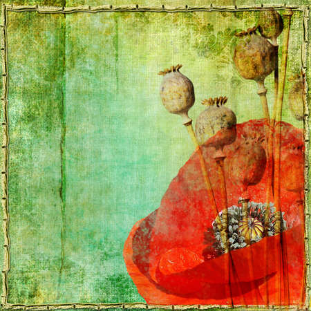 vintage paper with poppy flowers Stock Photo