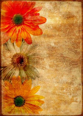 photoalbum: vintage background with floral border Stock Photo