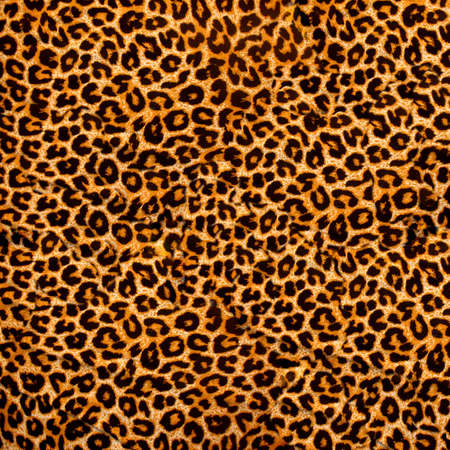 leopard fabric photo