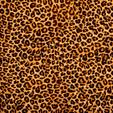 piel morena: tejido de leopardo