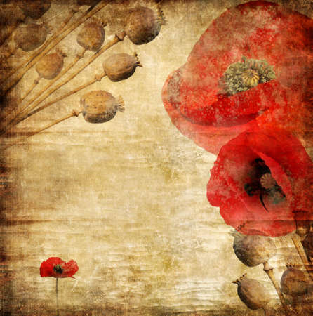 paper with poppy flowers in retro style photo