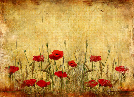 poppy field: retro paper background with poppy flowers
