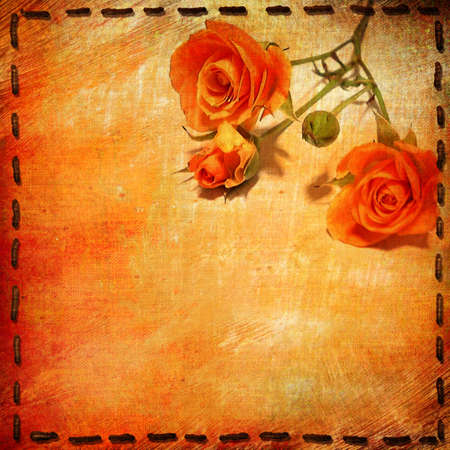 decorative paper with roses photo