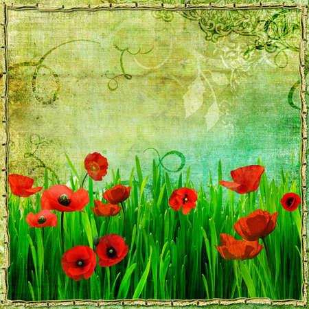 retro paper with poppy flowers