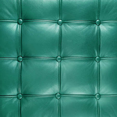 buttoned: decorative furnishing coloored leather