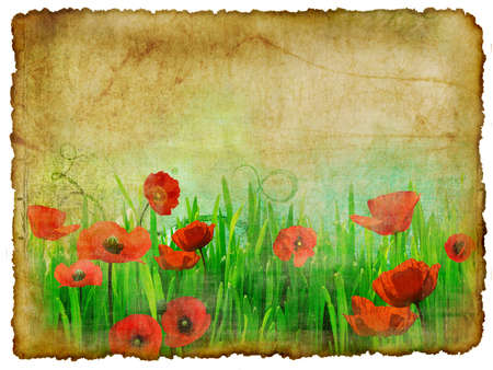 vintage card  with poppy flowers photo