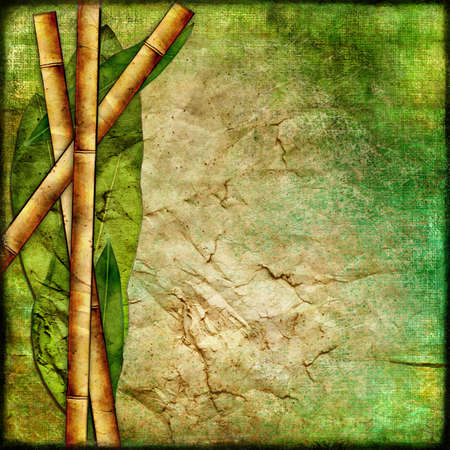 old bamboo paper photo
