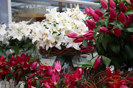 floristics: Bouquet of lilies in a glass vase with wicker basket in a flower shop Stock Photo