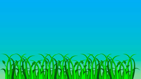 sedge: Vector grass on blue gradient background