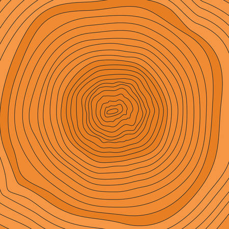 rings on a tree: Tree rings. Saw cut tree trunk vector. Illustration