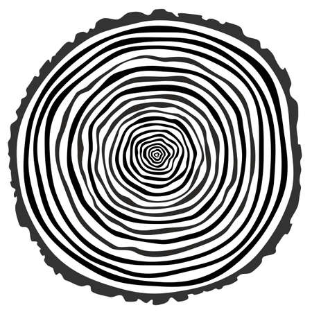 rings on a tree cut: Tree rings. Saw cut tree trunk vector. Illustration