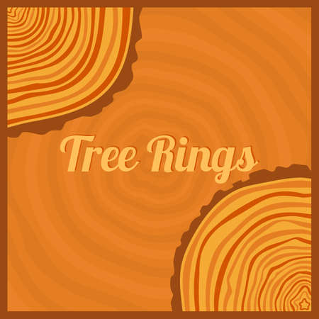 tree rings: Tree rings. Saw cut tree trunk background vector. Illustration