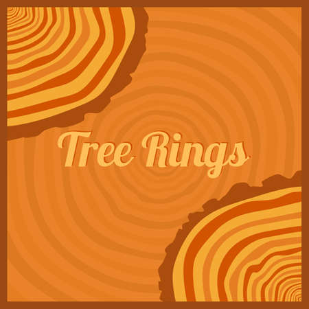 rings on a tree cut: Tree rings. Saw cut tree trunk background vector. Illustration
