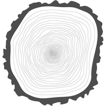 나무 반지. 잘라 나무 줄기 벡터를 보았다. 일러스트