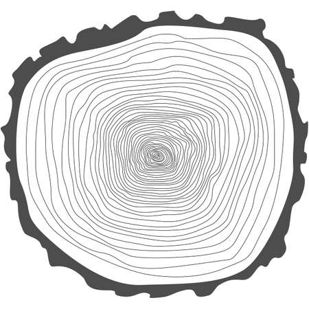 tree rings: Tree rings. Saw cut tree trunk vector. Illustration