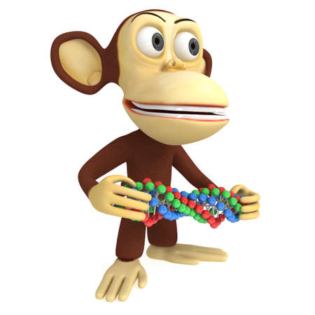 primate biology: 3d funny monkey with dna chain. 3D render isolated on white. Stock Photo